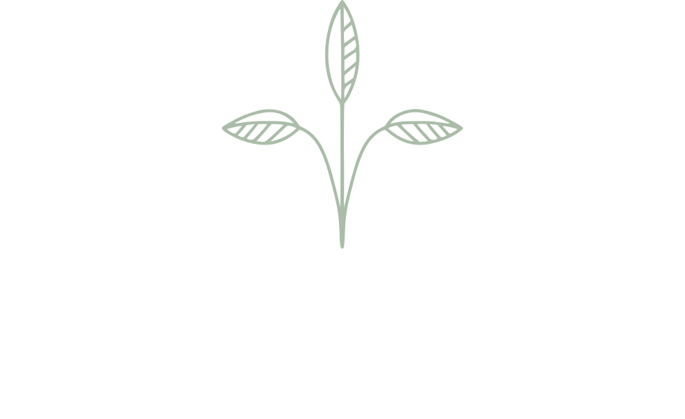 CoCreating Space